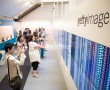 Getty Images at Cannes Lions 2013