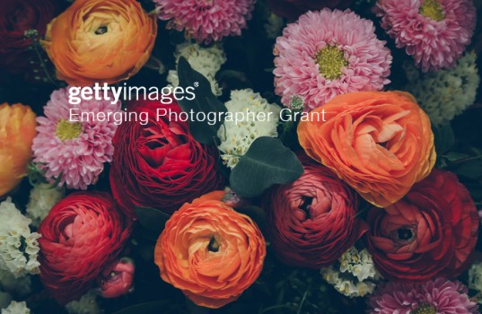 Attractively arranged bunch of flowers.